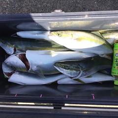10月 3日(日)午前便・タテ釣りの写真その8