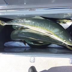 10月 3日(日)午前便・タテ釣りの写真その9