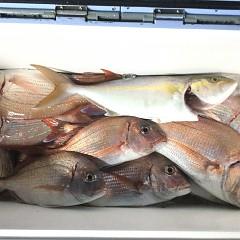 10月5日(火)午前便・タテ釣り・午後便・真鯛釣りの写真その9