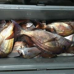 10月5日(火)午前便・タテ釣り・午後便・真鯛釣りの写真その10