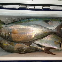 10月14日(木)午後便・ウタセ真鯛釣りの写真その5