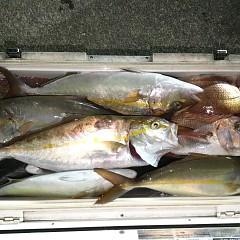 10月14日(木)午後便・ウタセ真鯛釣りの写真その6
