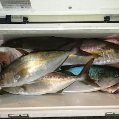 10月14日(木)午後便・ウタセ真鯛釣りの写真その7