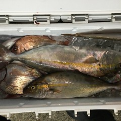10月14日(木)午後便・ウタセ真鯛釣りの写真その8