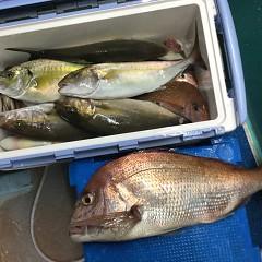 10月15日(金)午後便・ウタセ真鯛釣りの写真その8