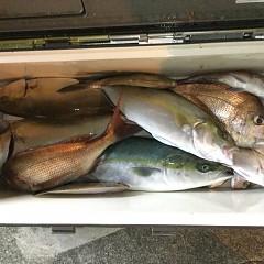 10月15日(金)午後便・ウタセ真鯛釣りの写真その12