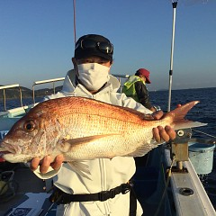 10月 16日(土)午前便・ウタセ真鯛の写真その1