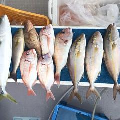 10月 16日(土)午前便・ウタセ真鯛の写真その6