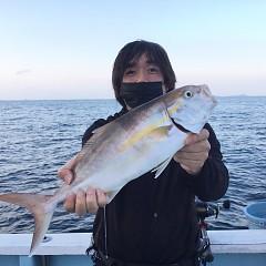10月 16日(土)午後便・ウタセ真鯛の写真その4
