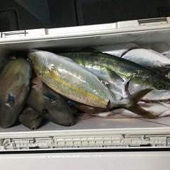10月 16日(土)午後便・ウタセ真鯛の写真その8