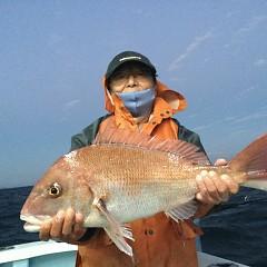 10月 17日(日)午前、午後便・ウタセ真鯛の写真その1