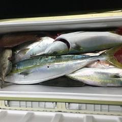 10月 23日(土)午前・午後・ウタセ真鯛の写真その8