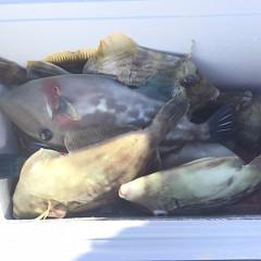 10月 24日(日)午前・カワハギ釣り 午後・ウタセ真鯛の写真その3