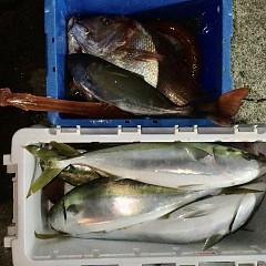 10月 24日(日)午前・カワハギ釣り 午後・ウタセ真鯛の写真その6