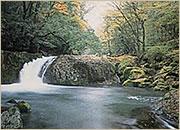 菊池渓谷写真